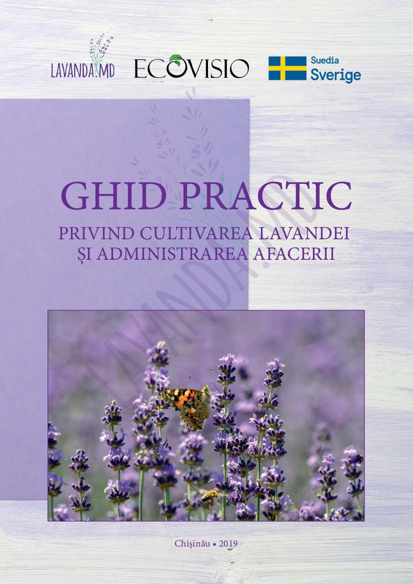 Ghid practic privind cultivarea lavandei și administrarea afacerii
